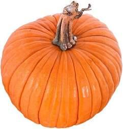 Sarah's pumpkin muffin recipe