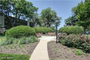Green Space at West Spring Condos