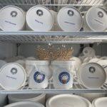 Bethesda Condo Queen Loves Ice Cream!